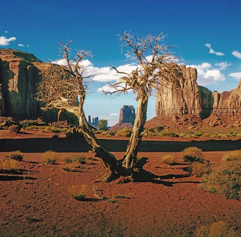 κοιλάδα μνημείων της Αριζό& στοκ φωτογραφίες