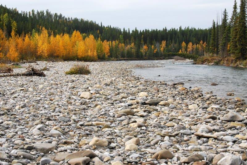 κοιλάδα ποταμών αγκώνων φθινοπώρου στοκ εικόνες