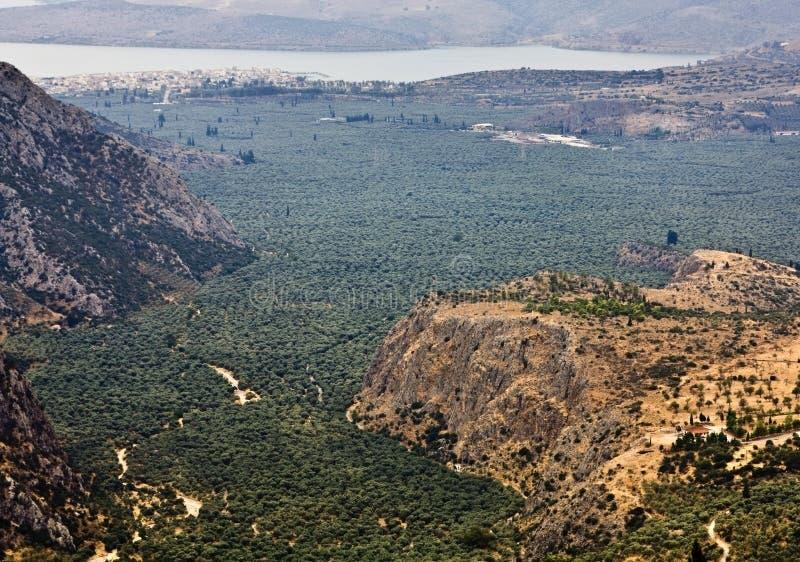 κοιλάδα της Ελλάδας amphissa στοκ φωτογραφία με δικαίωμα ελεύθερης χρήσης