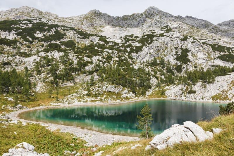 Κοιλάδα των επτά λιμνών στο εθνικό πάρκο Triglav κατά τη διάρκεια του καλοκαιριού στοκ εικόνα