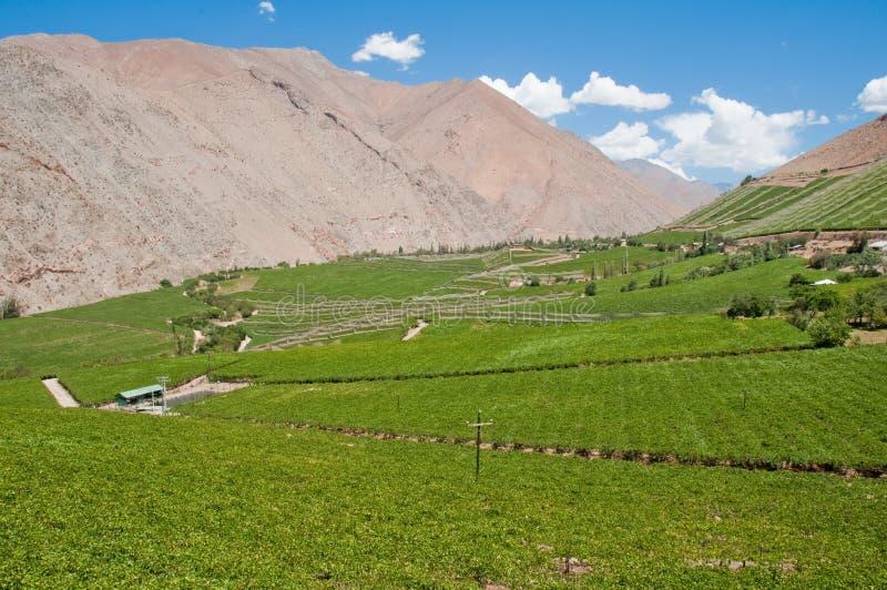 κοιλάδα elqui της Χιλής στοκ φωτογραφία