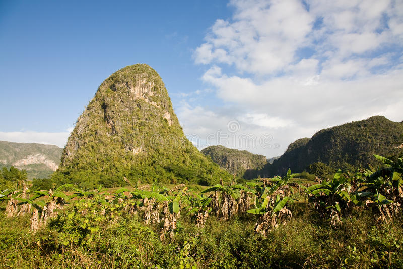 Κοιλάδα Vinales, Κούβα στοκ φωτογραφίες με δικαίωμα ελεύθερης χρήσης