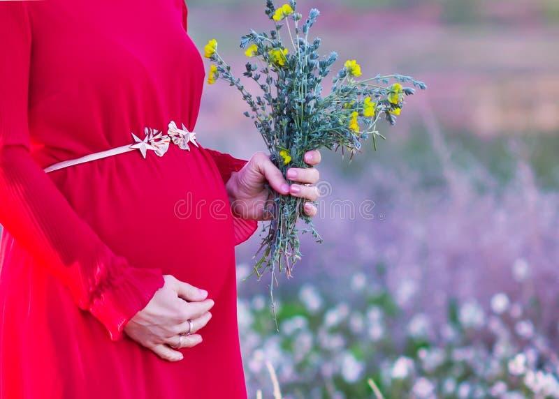 Κοιλιά μιας εγκύου γυναίκας σε μια κινηματογράφηση σε πρώτο πλάνο φορεμάτων στοκ εικόνα με δικαίωμα ελεύθερης χρήσης