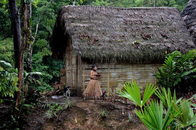 Κοινότητα Cotococha, Αμαζονία, Ισημερινός στοκ φωτογραφίες με δικαίωμα ελεύθερης χρήσης