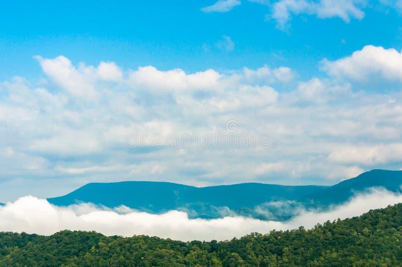 Κοινό πρωί σε νότιο Appalachia στοκ εικόνες