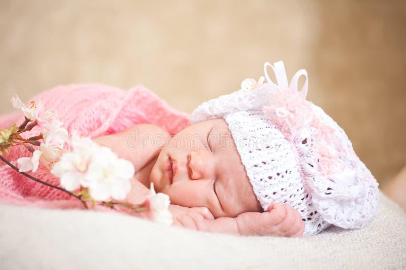Κοισμένος νεογέννητο μωρό (στην ηλικία 14 ημερών) στοκ εικόνα με δικαίωμα ελεύθερης χρήσης