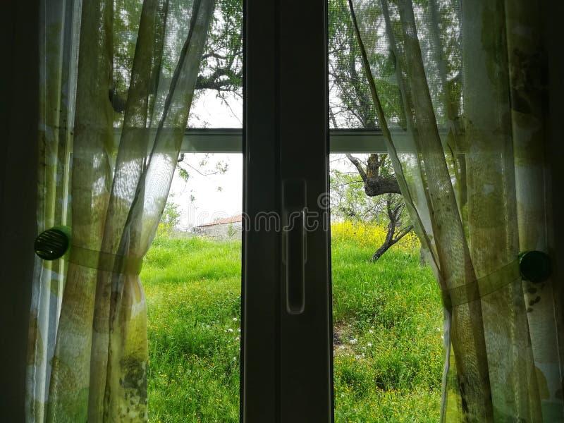 Κοιτάξτε από το παράθυρο στοκ φωτογραφία