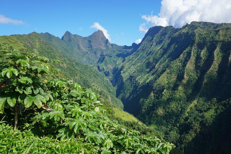 Κοιλάδα γαλλική Πολυνησία τοπίων βουνών της Ταϊτή στοκ φωτογραφίες