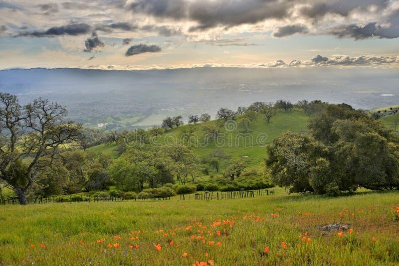 Κοιλάδα της Σάντα Κλάρα από το Joseph Δ Πάρκο χώρας επιχορήγησης, βόρεια Καλιφόρνια στοκ εικόνα με δικαίωμα ελεύθερης χρήσης