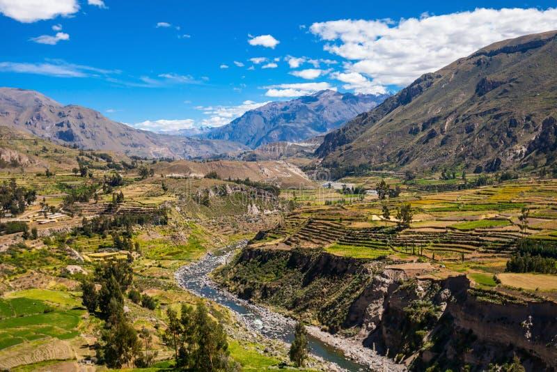 κοιλάδα του Περού colca στοκ φωτογραφίες