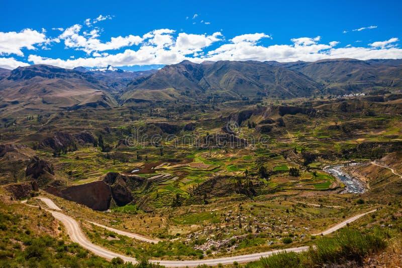 κοιλάδα του Περού colca στοκ φωτογραφία με δικαίωμα ελεύθερης χρήσης