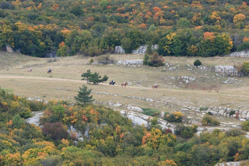 Κοιλάδα το φθινόπωρο με το τρέξιμο αλόγων στοκ εικόνα με δικαίωμα ελεύθερης χρήσης