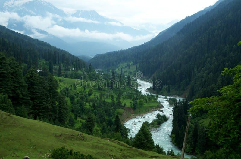 Κοιλάδα Aru σε pahalgam-2 στοκ εικόνα με δικαίωμα ελεύθερης χρήσης