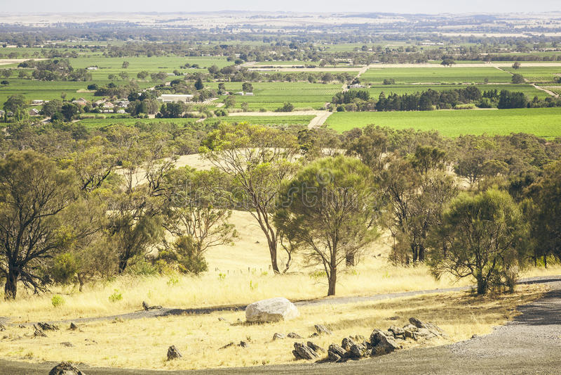 Κοιλάδα Barossa στοκ εικόνες με δικαίωμα ελεύθερης χρήσης