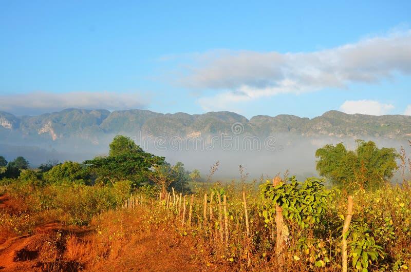 Κοιλάδα Vinales στην υδρονέφωση πρωινού, Κούβα στοκ φωτογραφία με δικαίωμα ελεύθερης χρήσης