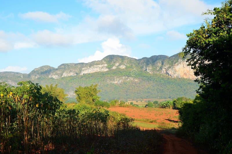 Κοιλάδα Vinales το πρωί, Κούβα στοκ εικόνες