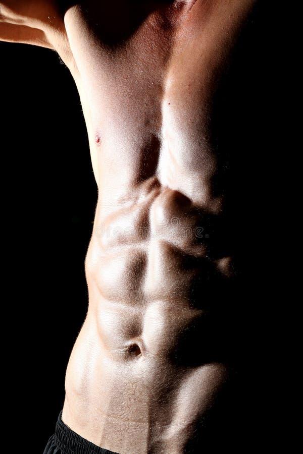 Κοιλιακοί μυ'ες στοκ εικόνες με δικαίωμα ελεύθερης χρήσης