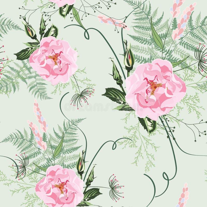 Κοκκινίστε ρόδινες ανθοδέσμες στο ανοικτό πράσινο υπόβαθρο Άνευ ραφής σχέδιο με τα λεπτά άγρια λουλούδια και τα χορτάρια τριαντάφ ελεύθερη απεικόνιση δικαιώματος