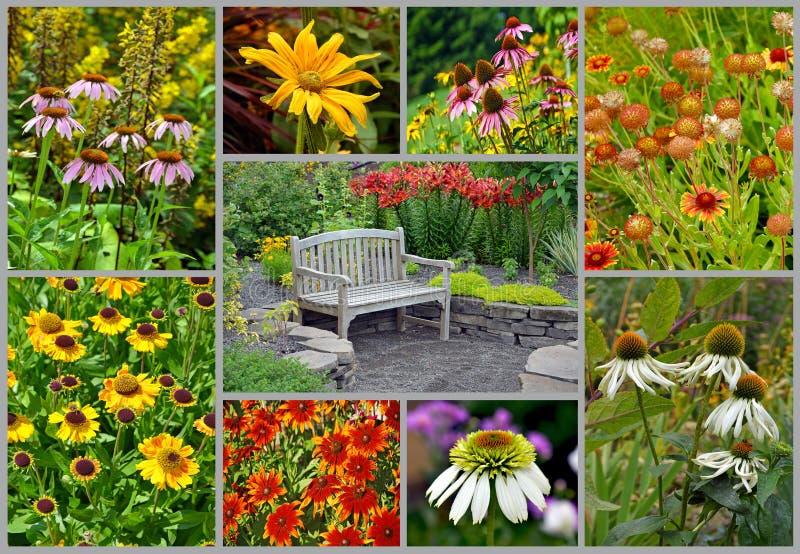 Κολάζ θερινών κήπων στοκ φωτογραφία με δικαίωμα ελεύθερης χρήσης
