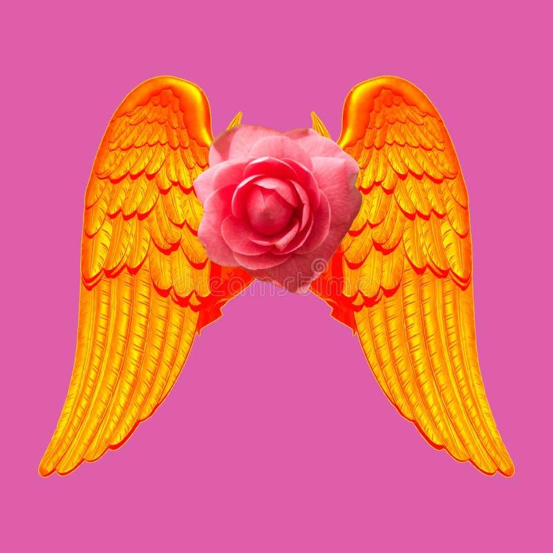 Κολάζ σύγχρονης τέχνης Τα χρυσά φτερά έννοιας με αυξήθηκαν στο ρόδινο υπόβαθρο στοκ φωτογραφία με δικαίωμα ελεύθερης χρήσης
