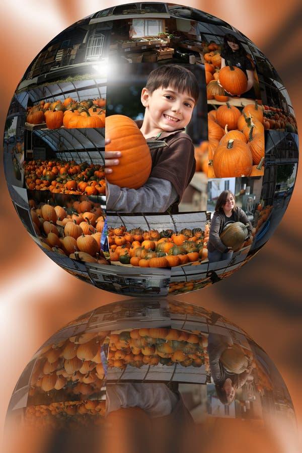 κολοκύθα μπαλωμάτων σφα&io στοκ εικόνες με δικαίωμα ελεύθερης χρήσης