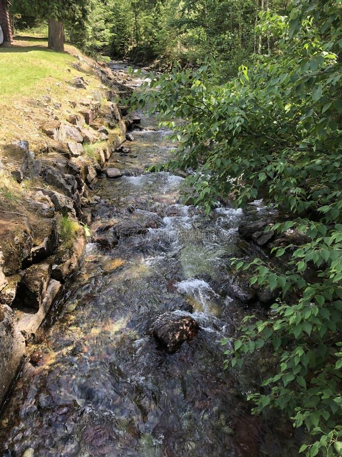 Κολπίσκος δίπλα στο οίκημα στη λίμνη MacDonald στοκ εικόνα