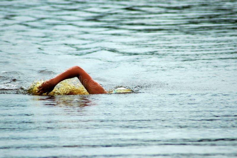 κολυμβητής στοκ φωτογραφίες