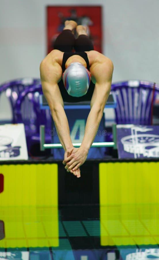 κολυμβητής στοκ εικόνες