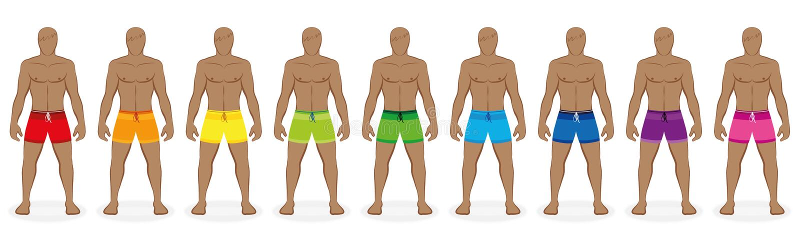 Κολυμπήστε τα χρώματα αρσενικό Beachwear ουράνιων τόξων κορμών απεικόνιση αποθεμάτων