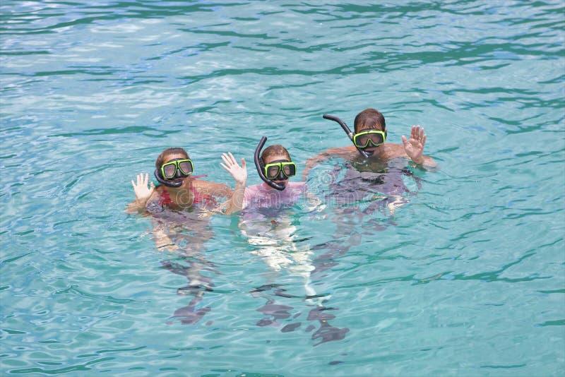 κολυμπώντας με αναπνευτ στοκ εικόνες