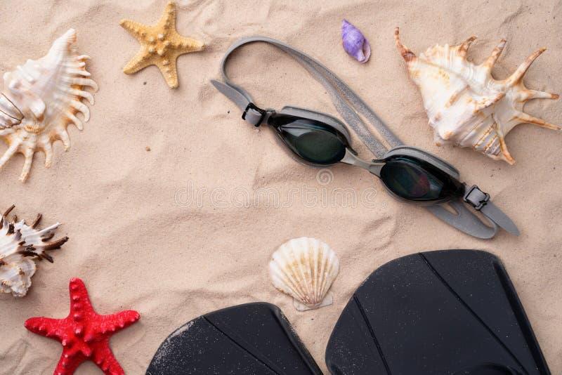 Κολυμπώντας προστατευτικά δίοπτρα και βατραχοπέδιλα στην άμμο με τα κοχύλια και τους αστερίες στοκ εικόνες