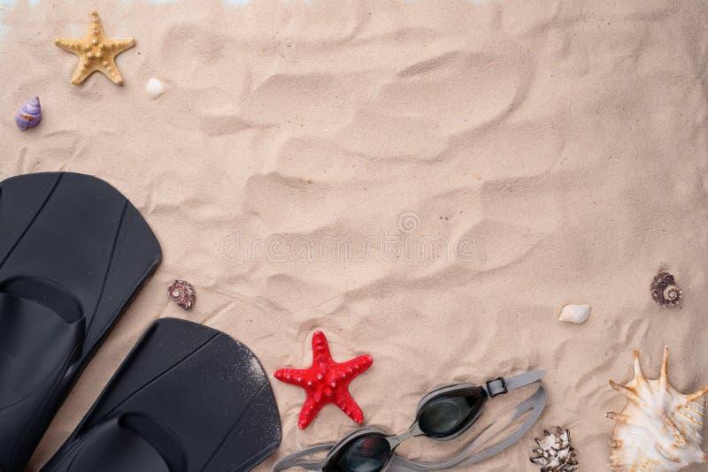 Κολυμπώντας προστατευτικά δίοπτρα και βατραχοπέδιλα στην άμμο με τα κοχύλια και τους αστερίες στοκ φωτογραφίες με δικαίωμα ελεύθερης χρήσης