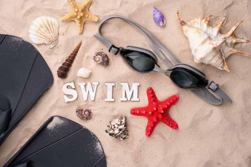 Κολυμπώντας προστατευτικά δίοπτρα και βατραχοπέδιλα στην άμμο με τα κοχύλια και τους αστερίες στοκ φωτογραφία με δικαίωμα ελεύθερης χρήσης