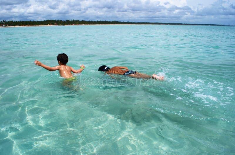 κολυμπώντας ύδατα θάλασσας της Βραζιλίας καθαρά κρυστάλλινα στοκ εικόνες με δικαίωμα ελεύθερης χρήσης