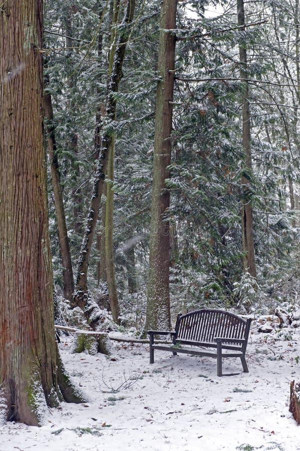 κολόβωμα πάρκων πάγκων στοκ φωτογραφία με δικαίωμα ελεύθερης χρήσης