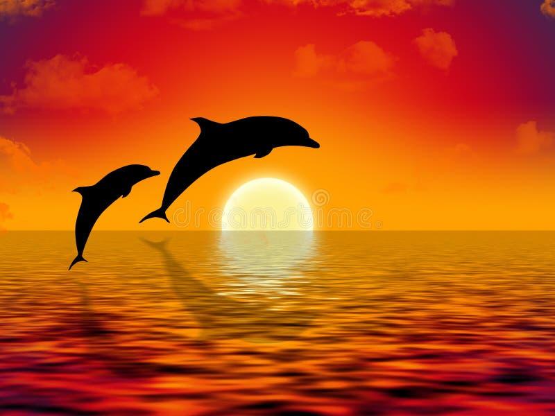 κολύμβηση δελφινιών διανυσματική απεικόνιση
