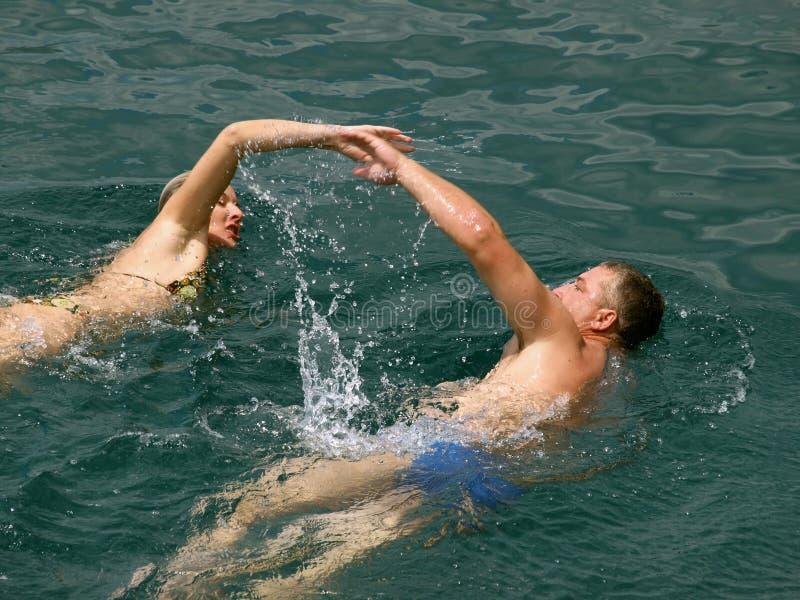 κολύμβηση θάλασσας ζευ στοκ φωτογραφίες με δικαίωμα ελεύθερης χρήσης