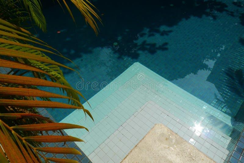 Download κολύμβηση λιμνών στοκ εικόνα. εικόνα από χαλαρώστε, τουρίστας - 22778519