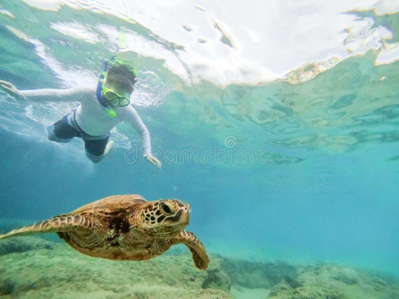Κολύμβηση με αναπνευστήρα με τη χελώνα στοκ εικόνες με δικαίωμα ελεύθερης χρήσης