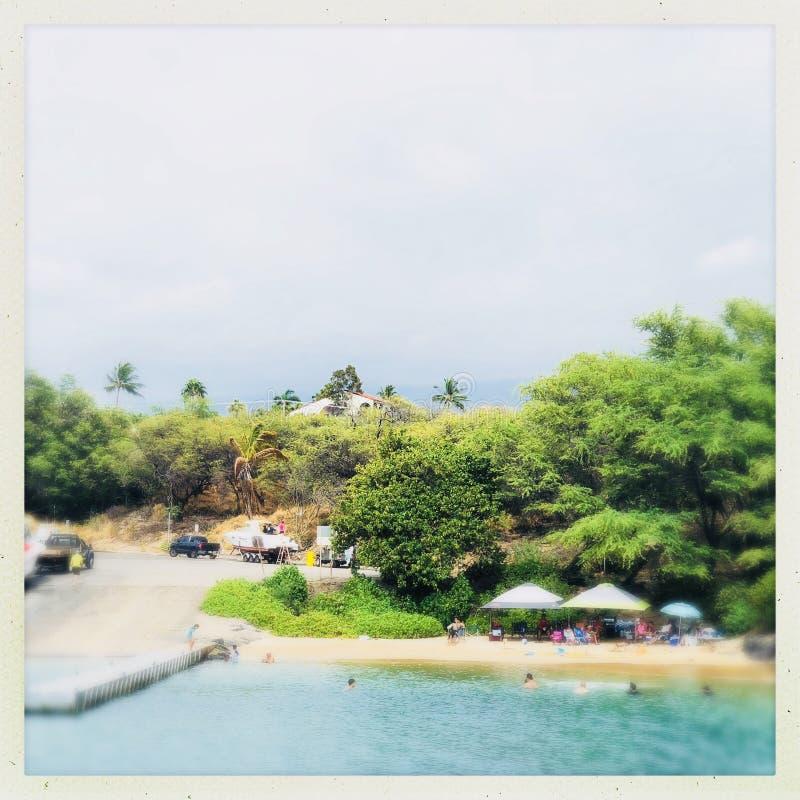 Κολύμβηση Kihei στοκ εικόνα με δικαίωμα ελεύθερης χρήσης