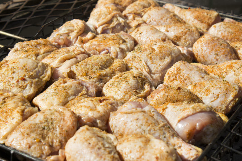 Κομμάτια κοτόπουλου στοκ φωτογραφίες με δικαίωμα ελεύθερης χρήσης