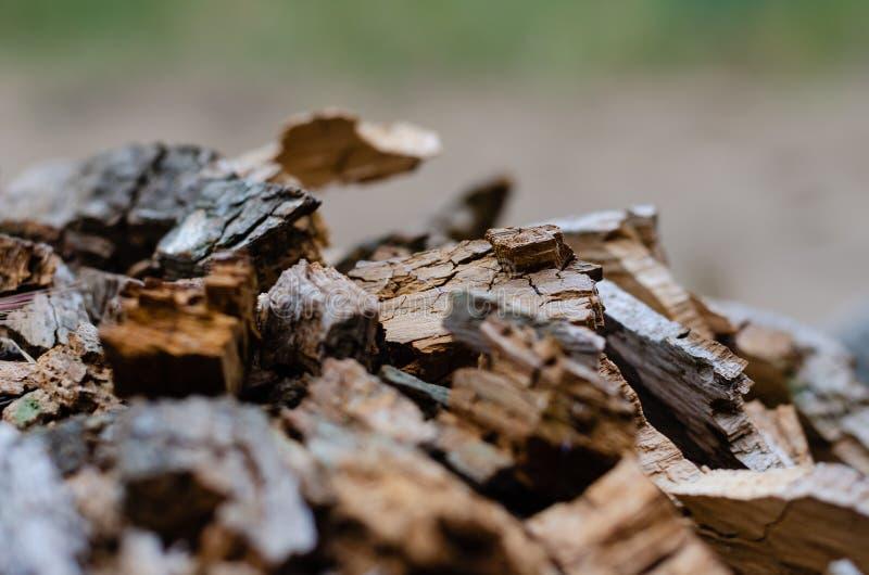 Κομμάτια το σάπιο ξύλο Θερμό καφετί φυσικό υπόβαθρο Πυροβολισμός σε επίπεδο ματιών r στοκ φωτογραφία με δικαίωμα ελεύθερης χρήσης