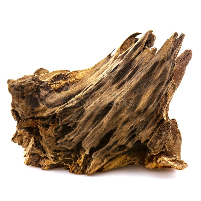 Κομμάτι καλά φορημένος driftwood στοκ φωτογραφία με δικαίωμα ελεύθερης χρήσης