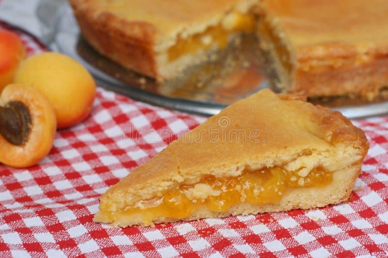 Κομμάτι της πίτας βερίκοκων στοκ εικόνες