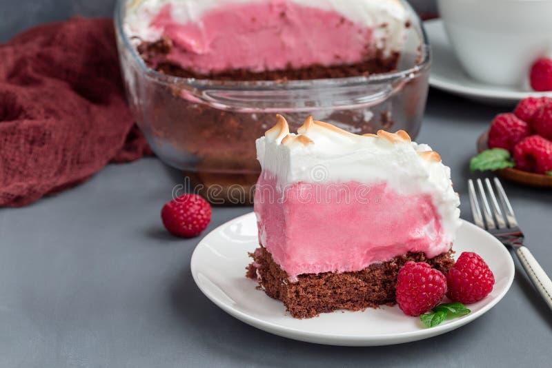 Κομμάτι της ψημένης Αλάσκας με το κέικ σφουγγαριών σοκολάτας, το παγωτό σμέουρων και τις μαρέγκες, σε ένα άσπρο πιάτο, οριζόντιο στοκ εικόνα