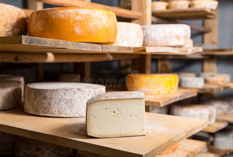 Κομμάτι του μεγάλου κεφαλιού τυριών αιγών στοκ εικόνες με δικαίωμα ελεύθερης χρήσης