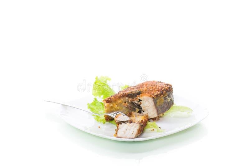 Κομμάτι των τηγανισμένων ψαριών λούτσων σε ένα πιάτο που απομονώνεται στο λευκό στοκ εικόνες με δικαίωμα ελεύθερης χρήσης