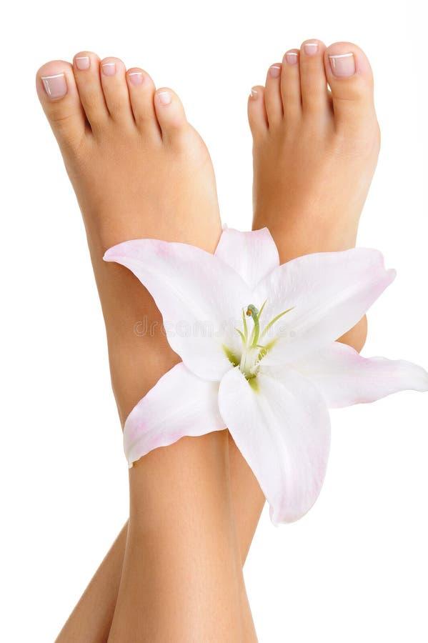 κομψά πόδια θηλυκών υγιών στοκ εικόνα με δικαίωμα ελεύθερης χρήσης
