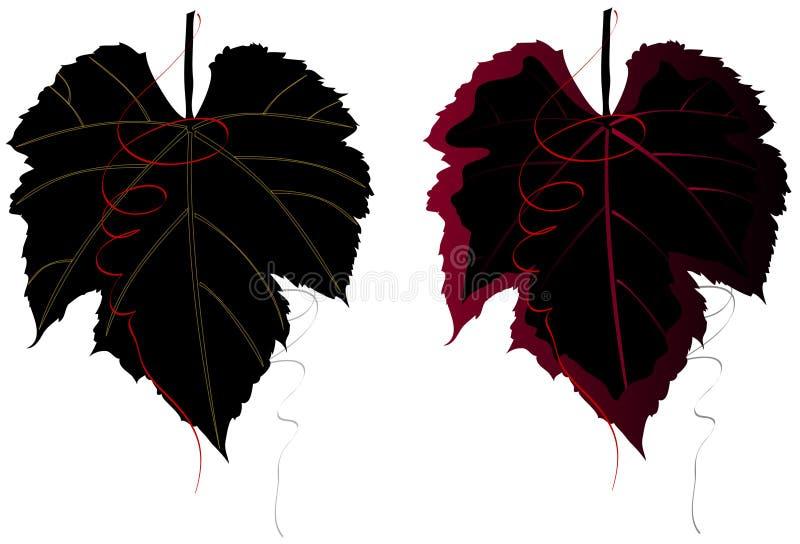 Download κομψά φύλλα σταφυλιών διανυσματική απεικόνιση. εικονογραφία από σταφύλια - 2229968