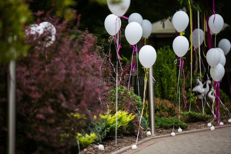 Κομψή και διακοσμημένη διασκέδαση πορεία στο γαμήλιο διάδρομο με το άσπρο ballo στοκ φωτογραφίες με δικαίωμα ελεύθερης χρήσης